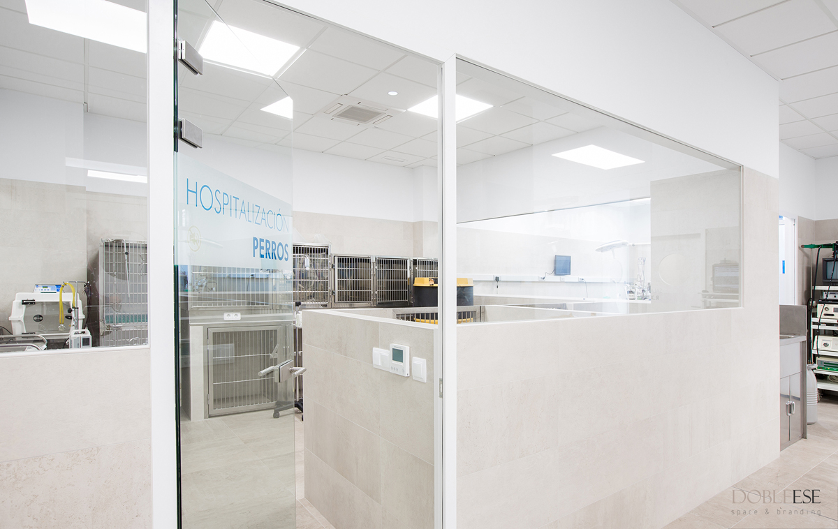 Hospital veterinario constitucion en Valencia