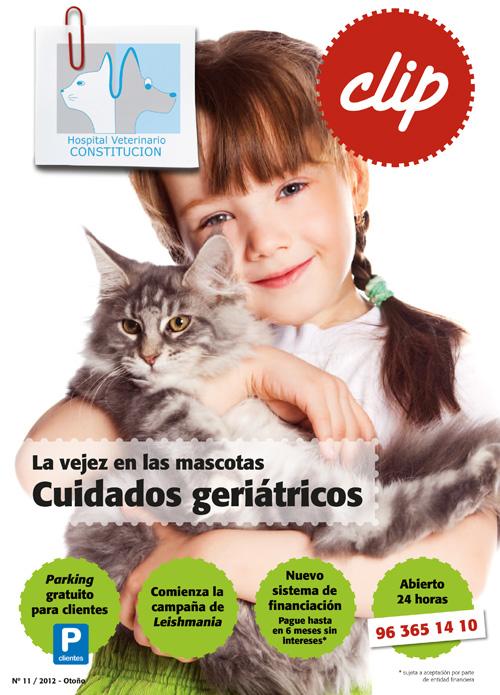 La vejez de las mascotas. Cuidados geriatricos - Hospital Veterinario Constitucion