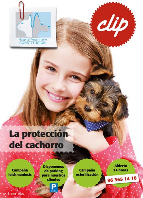 La proteccion del cachorro - Hospital Veterinario Constitucion