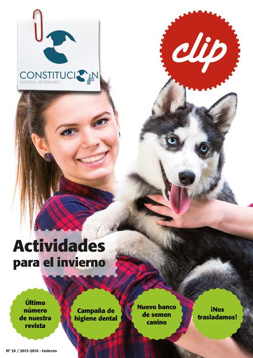 Actividades para el invierno - Hospital Veterinario Constitucion