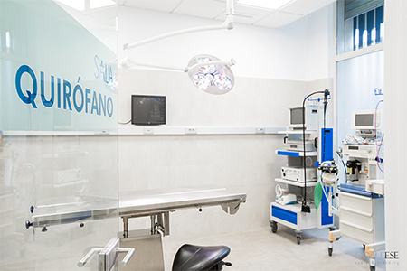 Cirugia veterinaria - Valencia Hospital Veterinario