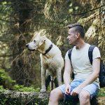 Planes para disfrutar con tu perro