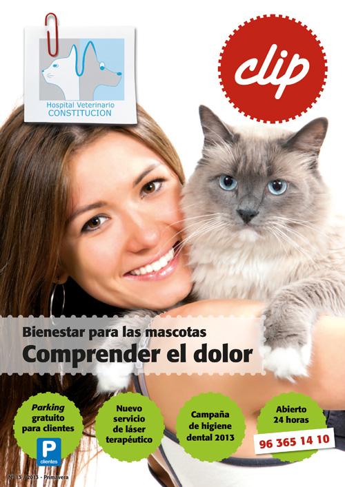 Bienestar para las mascotas - Hospital Veterinario Constitucion