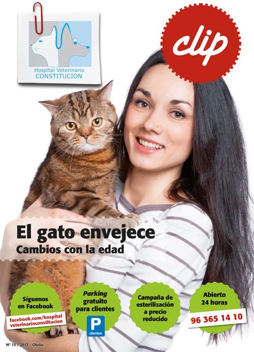 El gato envejece - Hospital Veterinario Constitucion