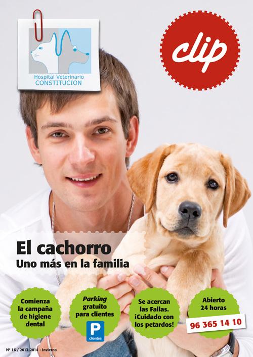 El cachorro - Hospital Veterinario Constitucion