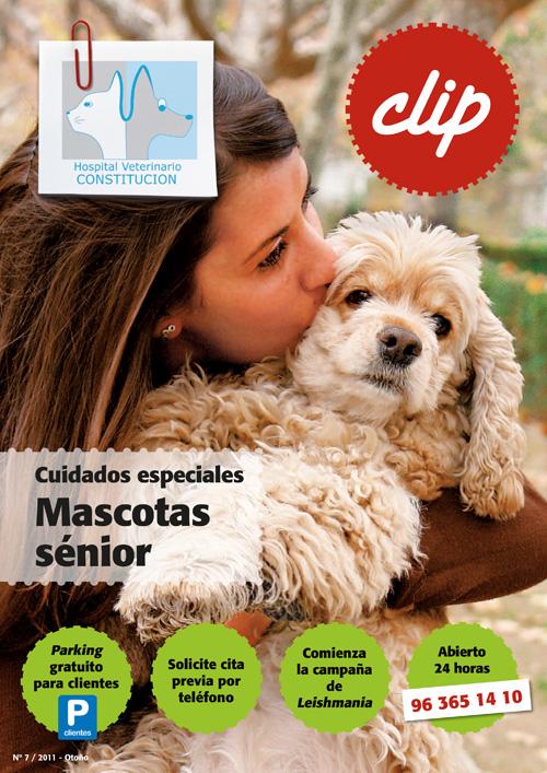 Mascotas senior - Hospital Veterinario Constitucion