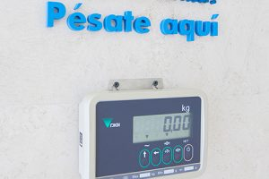 Obesidad y control de peso - Hospital Veterinario Valencia