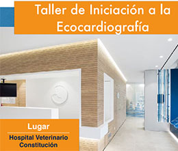 Curso ecocardiografia veterinaria - Valencia hospital constitucion
