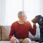 La importancia de vivir con animales